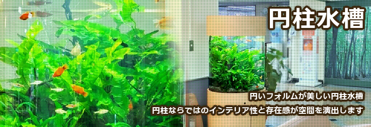 円柱水槽のレンタルは福岡アクアガーデンへ