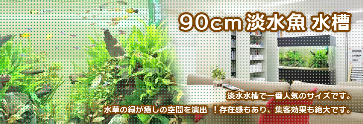 90cmの淡水魚水槽 水槽レンタルな福岡アクアガーデンへ