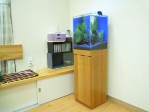施設の多目的スペースに明るい水槽を