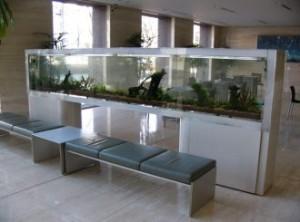 4メートルの大型淡水魚水槽