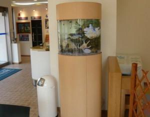 安らぎの円柱水槽!