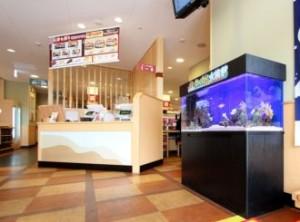 魅力がつまった海水魚水槽