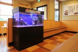 大手飲食チェーン店にわくわく水族館を設置!