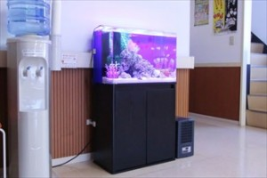 病院の待合室がグッと華やかになります!