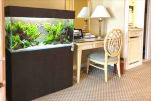 滋賀県米原市 ホテルに90cm淡水魚水槽