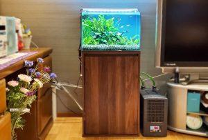 個人宅・リビングを彩る45cmの淡水魚水槽
