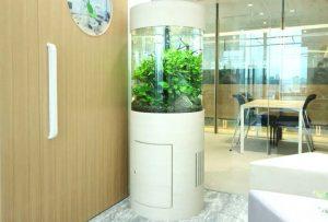 オフィスに60cm円柱水槽を設置